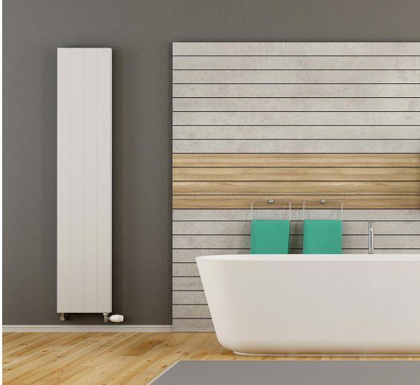 minimalist-bathroom-with-bathtub